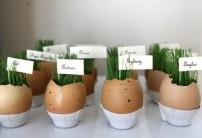 Velikonoční vajíčka - zdroj: Shelternes
