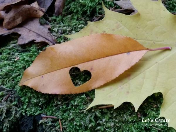 podzim-listi-tvoreni